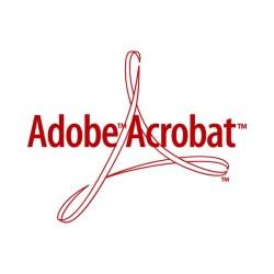 Curso Online de Acrobat.