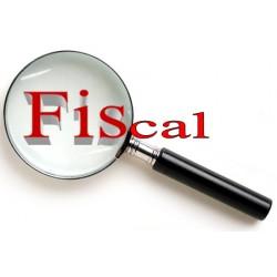 Curso Online de Fiscal