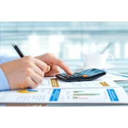 Curso Online de Análisis Contable y Presupuestario