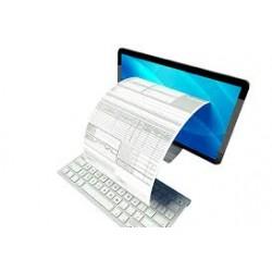 Curso Online de Factura Electrónica